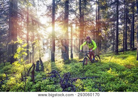 Fog Rider On A Mountain Bike Overcome Challenging Tracks In The Wild Alpine Forest At Dawn On A Back