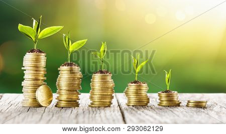 Startup Business Development. Investment of Money and Economic Growth
