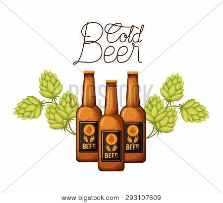 Cold Beer Label With Bottle And Pinecone Vector Illustration Design