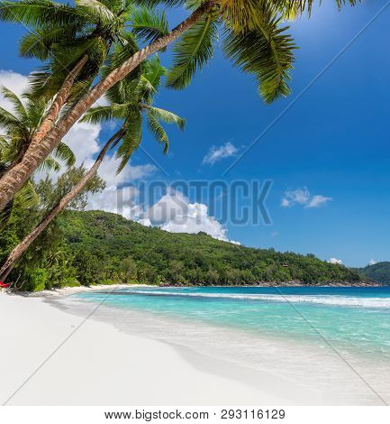 Beautiful Sandy Beach With Coconut Palm Trees And Turquoise Sea On Seychelles.
