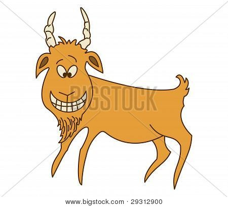 Cheerful red goat