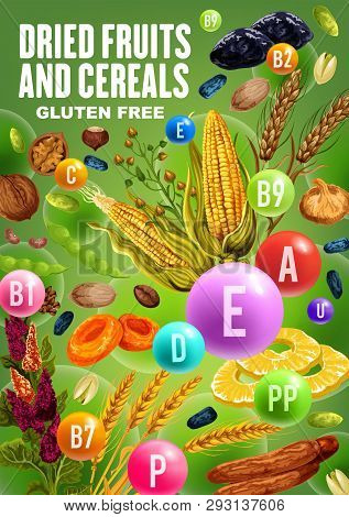 Dried Fruits, Nuts, Beans And Cereals Rich Of Vitamins And Minerals. Vector Date, Raisins And Fig, P