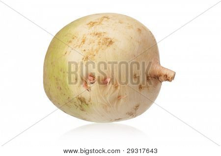 Fresh single radish isolated on white background