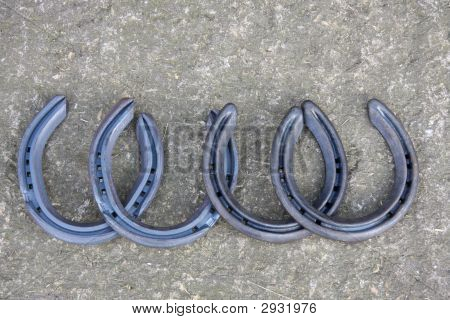 Four Horse Shoes
