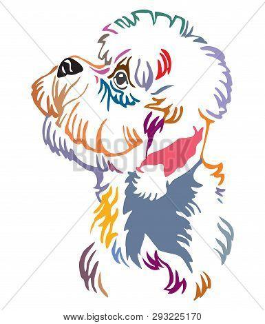 Colorful Decorative Outline Portrait Of Dandie Dinmont Terrier Dog Looking In Profile, Vector Illust