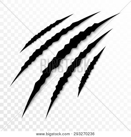 Creative Vector Illustration Of Claws Paw Scratches Isolated On Background. Art Design. Animal Horro