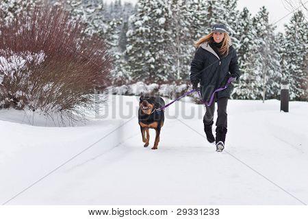 Female Walking A Dog