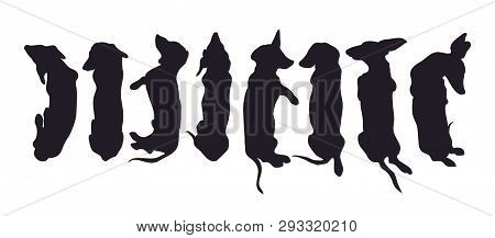 Vector Illustration Of A Dachshund Who Lies, Drawing Silhouette, Vector, White Background.