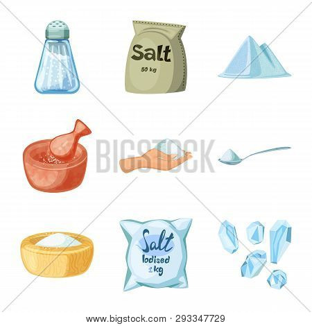 Vector Design Of Salt  And Food Icon. Collection Of Salt  And Mineral  Stock Vector Illustration.