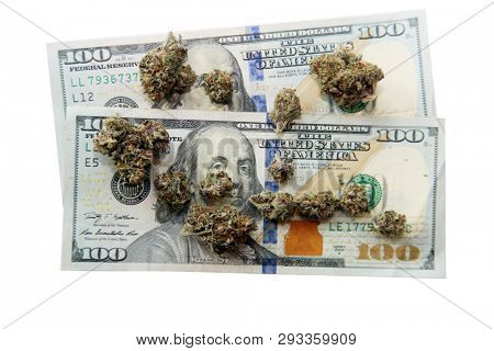 Marijuana. Cannabis. Marijuana Buds and American Money. Isolated on white. Room for text. Cash, Grass or Ass, nobody rides for free. Marijuana black market. cannabis for sale.