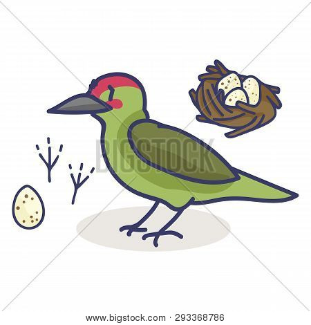 Cute Woodpecker Nest Cartoon Vector Illustration Motif Set.