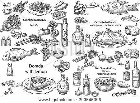 Creative Conceptual Vector Set. Sketch Hand Drawn Different Mediterranean Dishes Salad Chicken Fish
