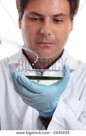 Scientist Or Researcher In Laboratory