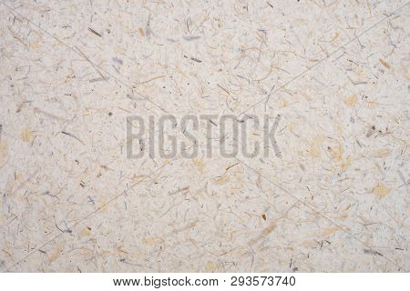 Light Brown Rice Mulberry Flower  Petal And Seed Hand Made Rough Paper Textured Background. Recycled