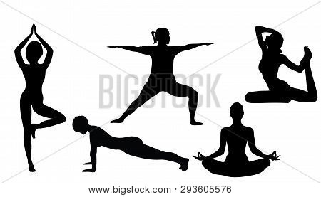 Women Doing Yoga Excercises Silhouettes Vector Illustration On A White Background Isolated. Activity