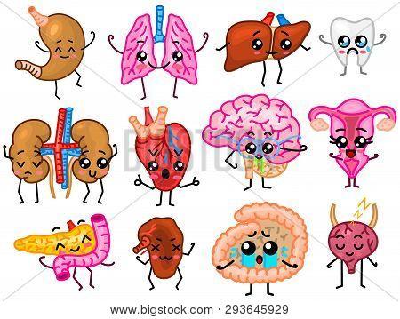 Set Of Organs. Cute Happy Human, Smiling Characters. Vector Pins, Cartoon Kawaii Icons. Healthy Hear
