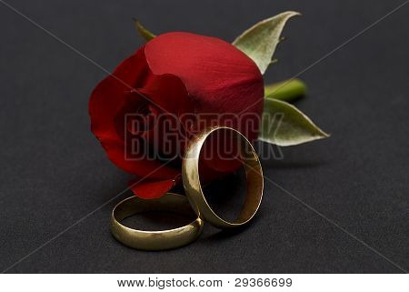 Wedding Rings And Red Roses Over Black.