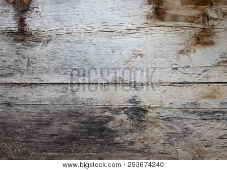 Abstract Of Old Log Wood Texture, Log Wood Stump As Background Or Wallpaper, Wood Stump Pattern, Cra