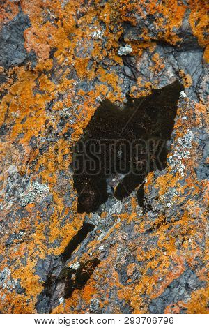 Plane Of Multicolored Boulder. Beautiful Rock Surface Close Up. Colorful Textured Stone. Amazing Det