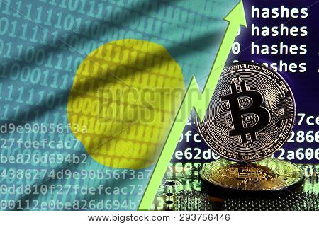 Palau flag and rising green arrow on bitcoin mining screen and two physical golden bitcoins poster