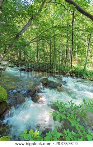 Bank Of The Forest River. Beautiful Summer Nature Scenery. Huge Rocks Form A Cascade On The Creek. T