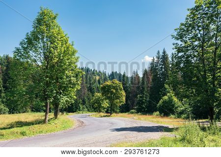Road Though Countryside In Mountains. Trees Along The Way. Wonderful Sunny Day