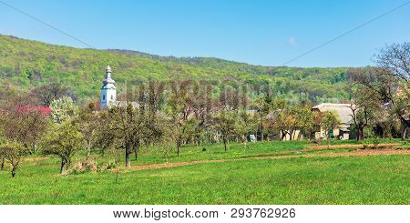 Mountainous Countryside In Springtime. Wonderful Sunny Weather. Orchard On The Outskirt Of The Villa