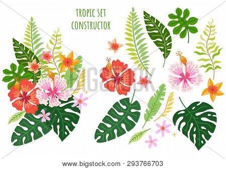 Set Of Tropical Flowers. Vector Cartoon Rainforest Floral Elements
