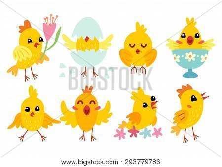 Set Of Cute Cartoon Chicken Characters For Easter Design.
