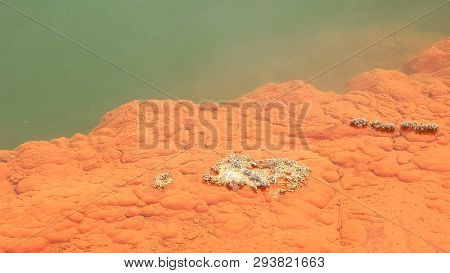 Extreme Close Up Of Champagne Pool At Waiotapu