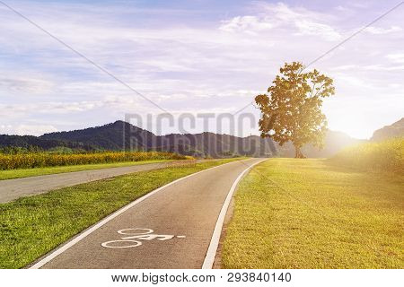 Scenery Bicycle Lane On A Hill With A Tree, Blue Sky And Mountain Forest Background.