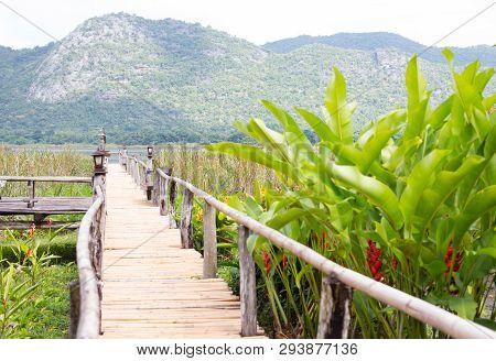 Closeup Bamboo Way Wooden Bridge In The Morning