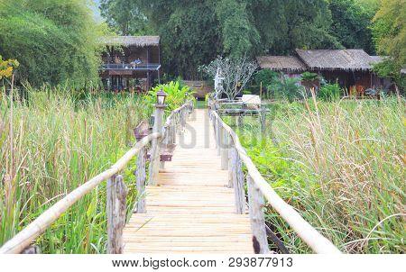 Closeup Bamboo Way Wooden Bridge Way  Back To Home