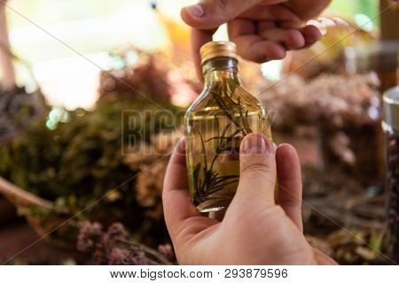 tincture or potion bottle in hand of herbalist  bunch of dry healthy herbs in background alternative medicine