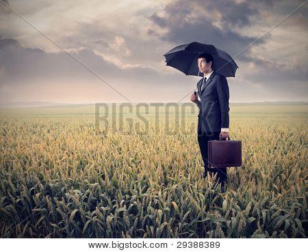 Sad businessman under an umbrella on a wheat field