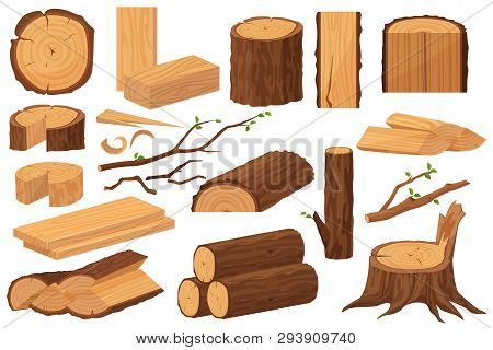 Wood Industry Raw Materials. Realistic Production Samples Collection. Tree Trunk, Logs, Trunks, Wood