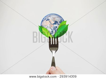 Green Food, Environmental Concept. Hand Holding Fork With Leaves And Globe. Element Of This Image Ar