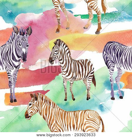 Exotic Zebra Wild Animal In A Watercolor Style. Watercolor Background Illustration Set. Seamless Bac