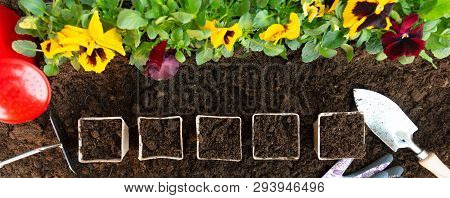 Gardening Tools And Paper Pots On Soil Background. Planting Spring Pansy Flower In Garden. Spring Ga