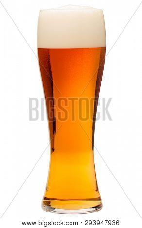 Full pilsner glass of bubbling amber beer or ale with tall head of foam isolated on white background