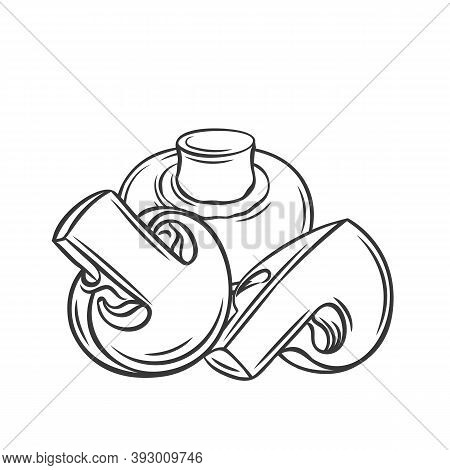 Champignon Mushroom And Slices, Vector Outline Monochrome Illustration In Sketch Hand-drawn Style. T