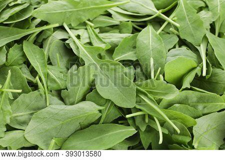Many Fresh Arugula Leaves As Background, Closeup