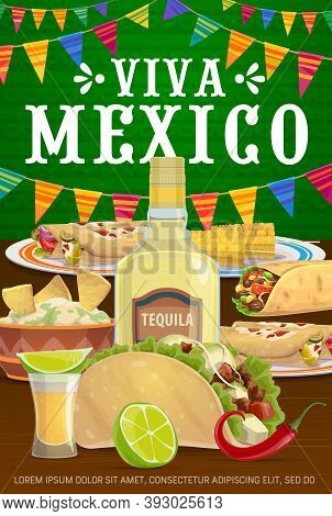 Viva Mexico Vector Poster With Traditional Mexican Food Enchiladas, Tacos And Burrito With Nachos An