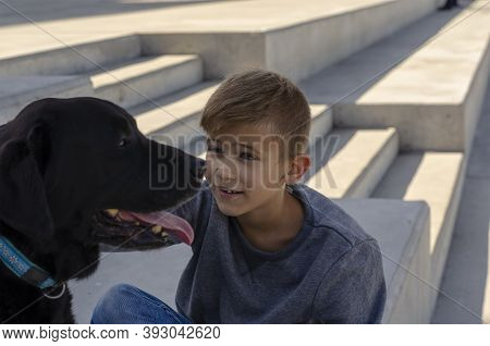 Portrait Of An Eight-year-old Boy And An 11-year-old Labrador During A Walk. Child Sits And Looks Ca