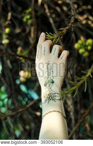 Flower Branch And The Girl's Mehndi Hand.