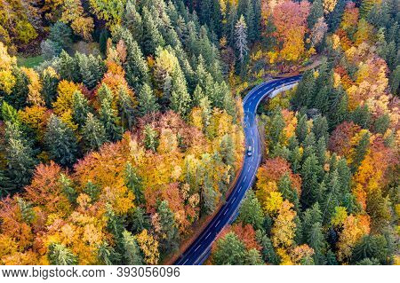 Aerial View Of Forest And Trees In Autumn And A Car On A Lonely Country Road. Freedom On A Road Trip