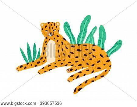 Childish Portrait Of Relaxed Leopard In Scandinavian Simple Style. Cute Jaguar Lying In Jungle Natur