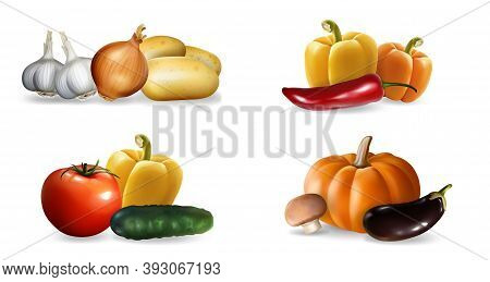 Realistic Vegetables Set. Collection Of Realism Style Drawn Pepper Pumpking Garlic Tomato Cucumber E