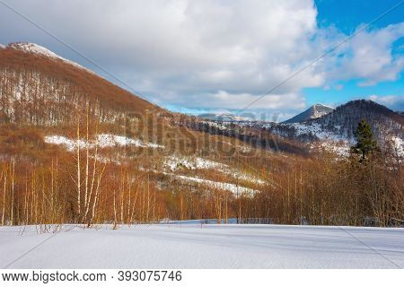 Sunny Winter Landscape In Mountains. Birch Forest On Snow Covered Meadow. Clouds On The Vivid Blue S