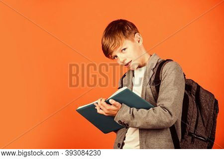 Final Exam. Little Child Take Exam Brown Background. Small Boy Write In Bluebook. Written Exam. Exam